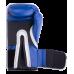 Перчатки боксерские Pro Style Anti-MB 14oz Everlast